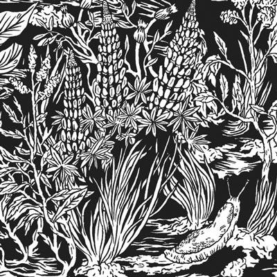 Wild-Strawberries-by-Eternal-Tapestry_FULL